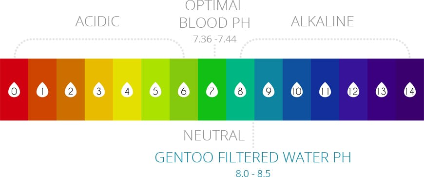 acidic vs alkaline ph-chart