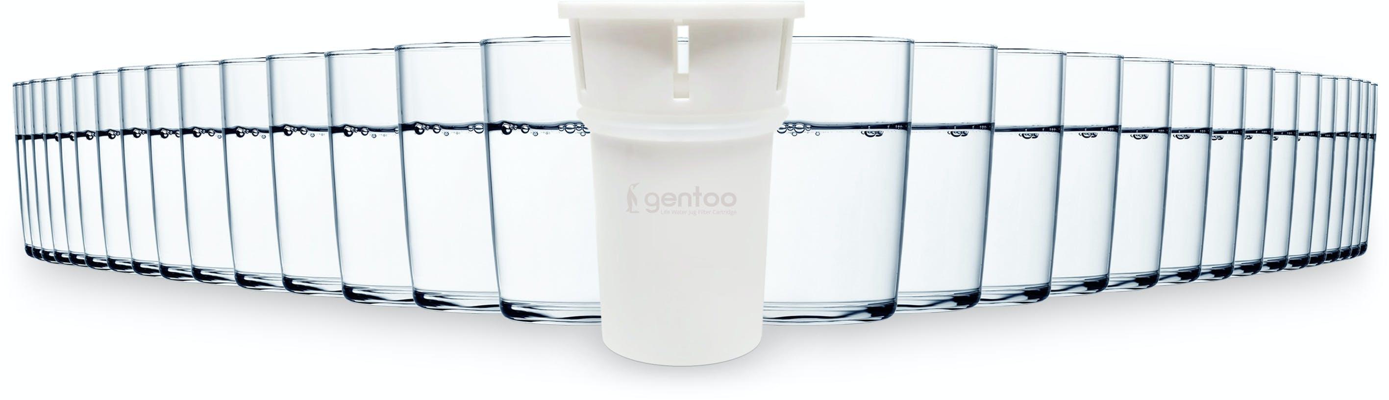 Gentoo Water Filter